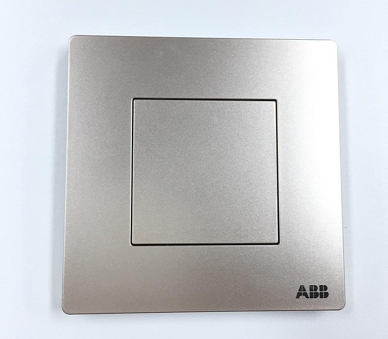AF504-PG 空白面板 朝霞金